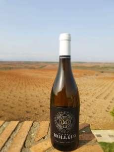 Бели вина Hacienda Molleda Blanco Garnacha